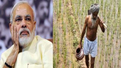 Photo of مودی حکومت نے مانا نوٹ بندی کا فیصلہ تھا غلط، کیش کی قلت سے کسانوں کی ٹوٹی کمر