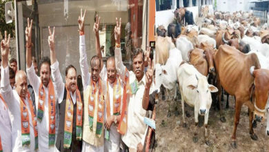 Photo of تلنگانہ میں بی جے پی کی انتخابی سوغات، ہر سال ایک لاکھ گائے تقسیم کرنے کی تیاری