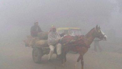 Photo of مدھیہ پردیش میں خون جما دینے والی ٹھنڈ: توڑا 13سال پرانا ریکارڈ، درجہ حرارت ایک ڈگری