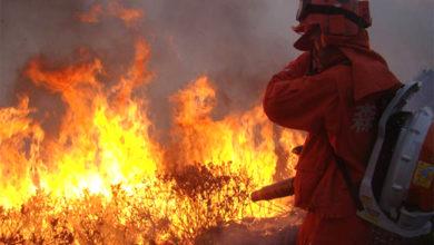 Photo of چین: جنگل میں زبردست آتشزدگی، آگ بجھاتے ہوئے 26 فائربریگیڈ اہلکاروں کی موت