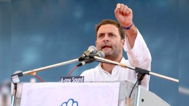Photo of کانگریس کی حکومت بننے پر ایک سال میں 24 لاکھ نوکریاں دی جائیں گی: راہل گاندھی