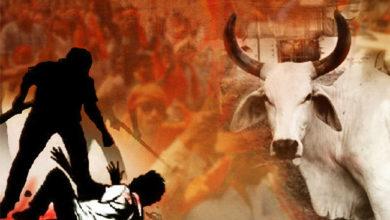 Photo of مدھیہ پردیش: ایکشن میں حکومت، گئورکشکوں کی غنڈہ گردی پر چلے گا سرکاری ڈنڈا