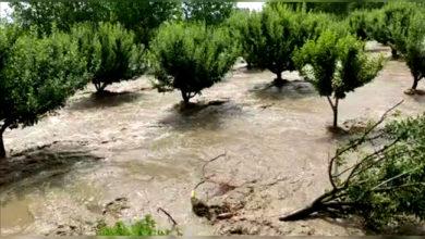 Photo of کشمیرمیں موسلادھار بارشوں اور تیز ہواؤں سے بے تحاشا جانی و مالی نقصان، 2خواتین سیمت 3 کی موت، فصلیں تباہ