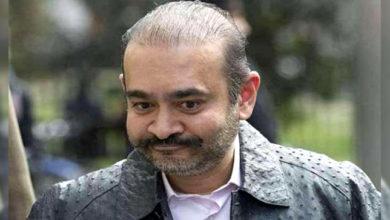 Photo of مفرور نیرو مودی کو نہیں ملی راحت، عدالت نے ضمانت کی عرضی کی خارج
