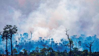 Photo of آمیزون آگ: آگ پر قابو پانے کیلئے پڑوسی ممالک کی میٹنگ