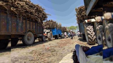 Photo of گنا کسانوں کی بقایا ادائیگی نہیں کرنے والوں پر ہوگی کاروائی: وزیر