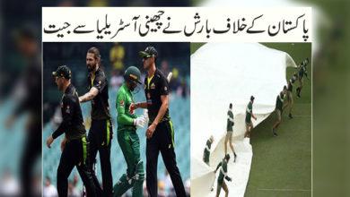 Photo of پاکستان کے خلاف بارش نے چھینی آسٹریلیا سے جیت