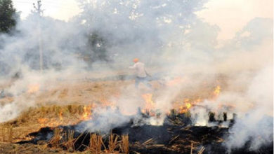 Photo of پرالي جلانے پر 105 کسانوں پر ڈیڑھ لاکھ روپے سے زیادہ کا جرمانہ
