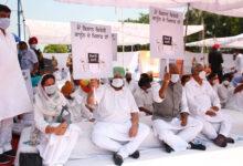 Photo of زرعی قوانین کے خلاف سپریم کورٹ جائیں گے: امریندر سنگھ
